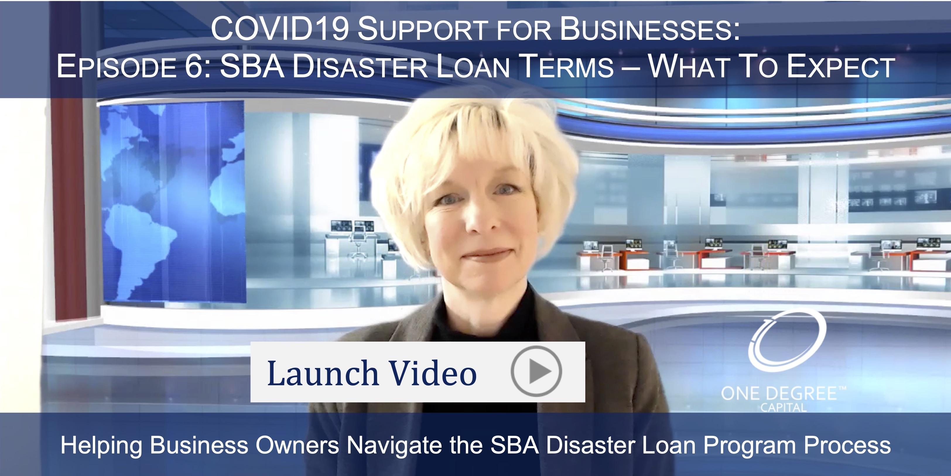 SBA Disaster Loan Terms